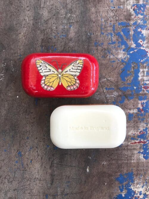 butterfly on a red soap
